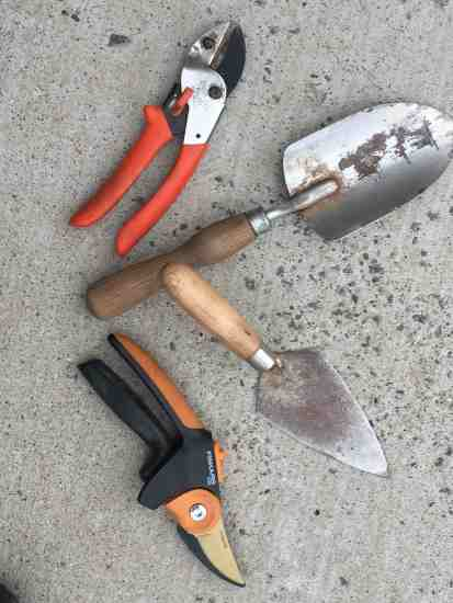 pruners-and-diggers_img_2441
